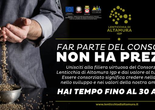 Consorzio di Tutela della Lenticchia di Altamura IGP: nuova campagna associati 2019